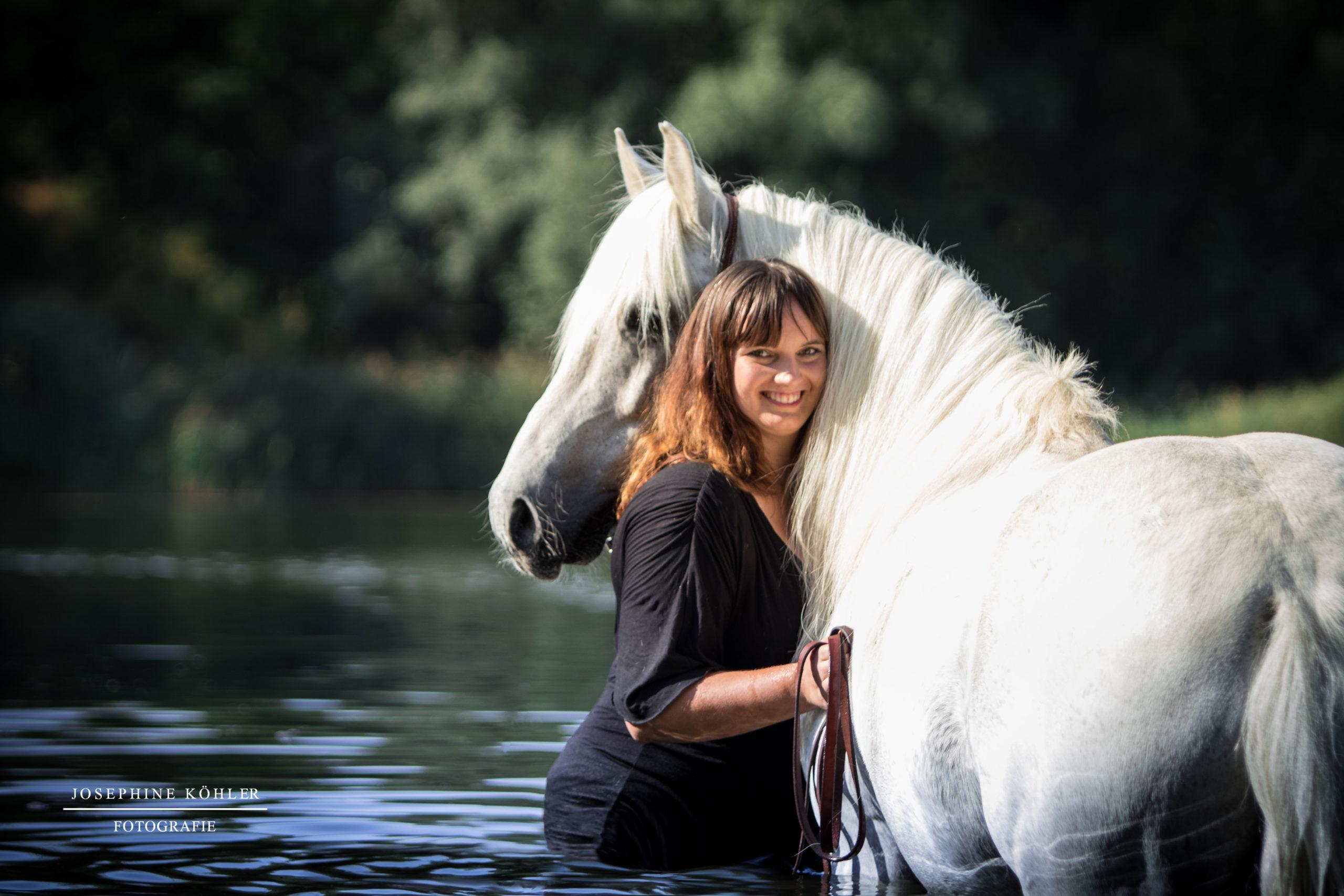 Portfolio Pferdefotografie
