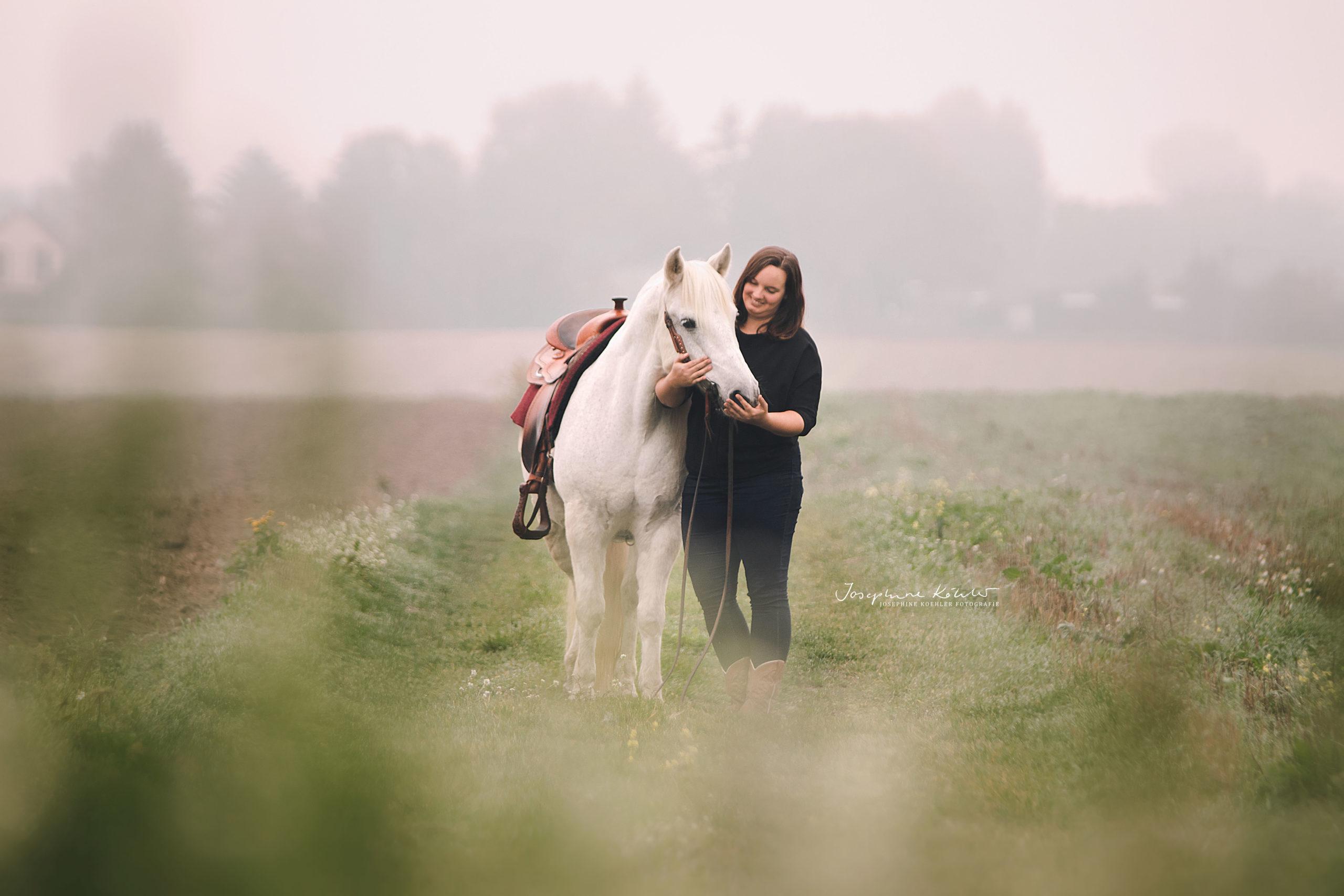 Fotoshooting Pferde