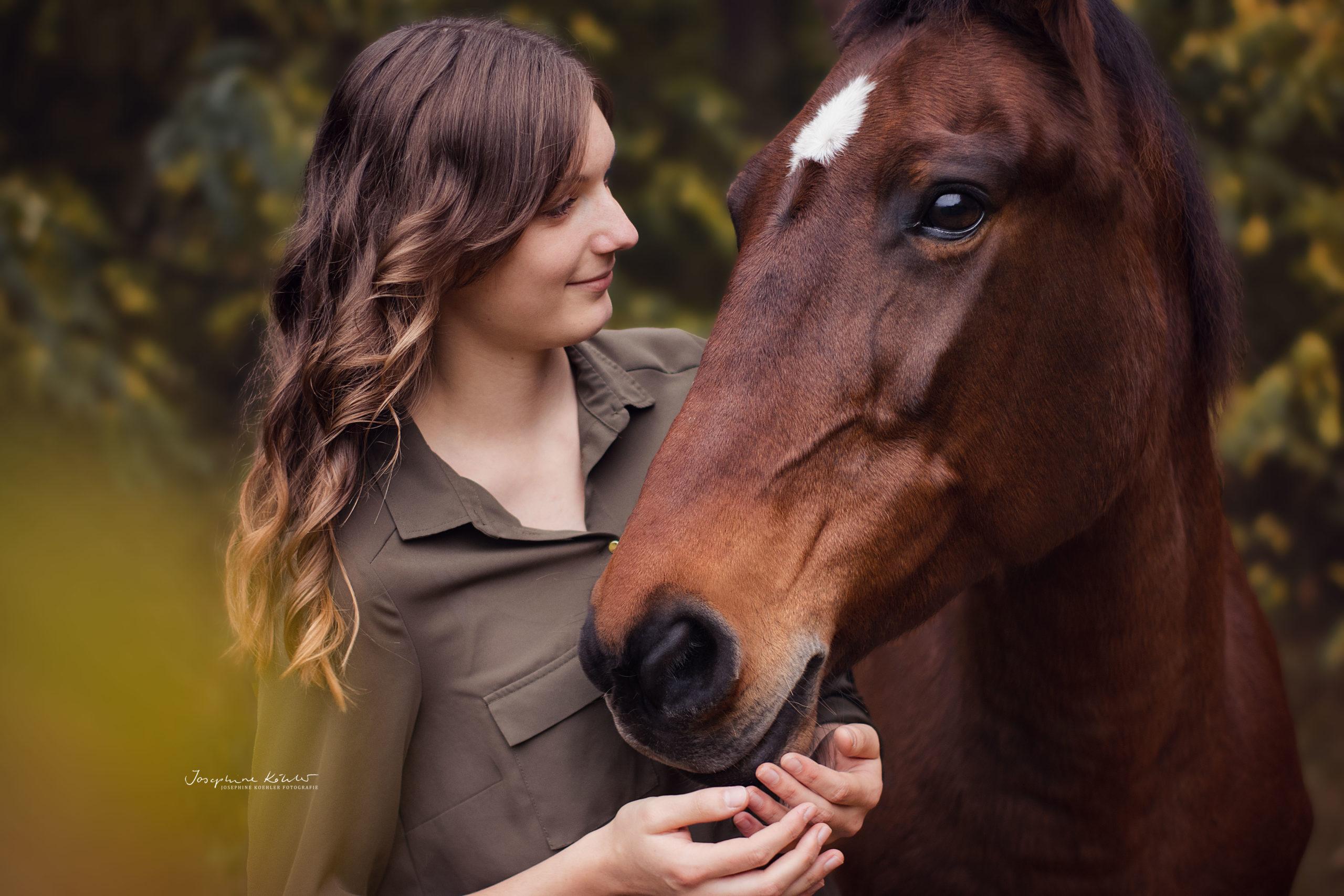 Pferdeporträt Brandenburg Josephine Köhler